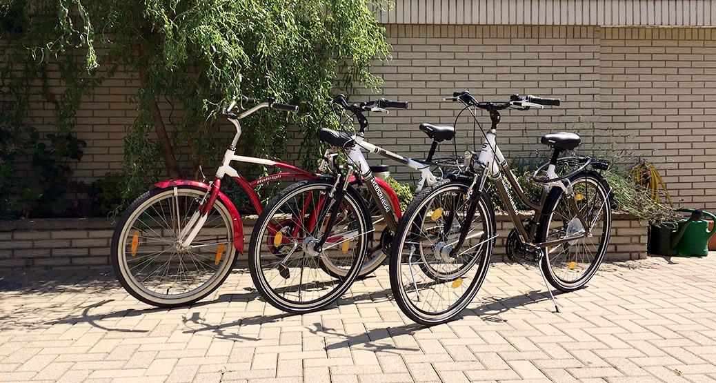 Unsere hauseigenen Fahrräder stehen Ihnen zur Verfügung